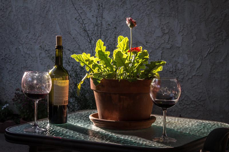 May 25 - Welles' wine.jpg