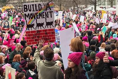 Women's March on Washington / January 21, 2017
