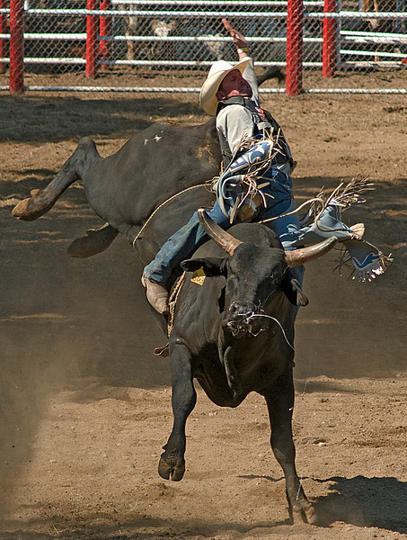 COOMBS RODEO-2009-3741A.jpg