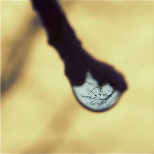 2011-12-04_1322963273.jpg