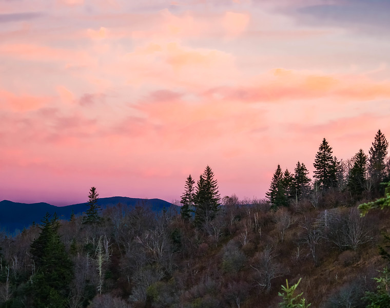 Pink in the Sky.jpg