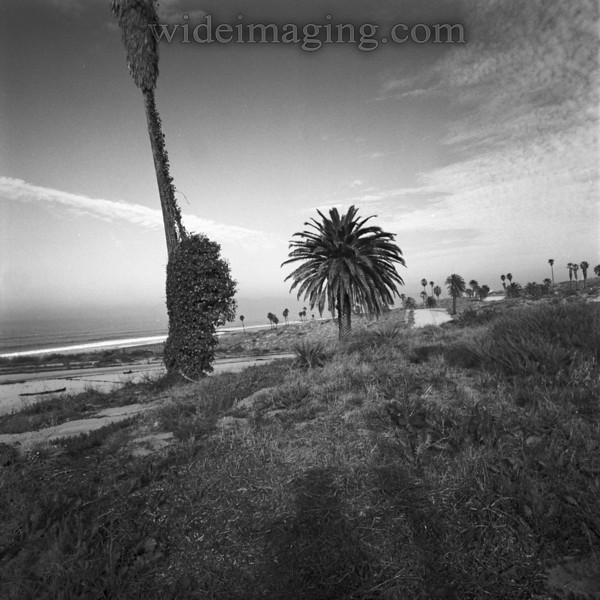 Rindge Avenue winding North: Playa Del Rey, Ghost Town, from October 9, 2000.