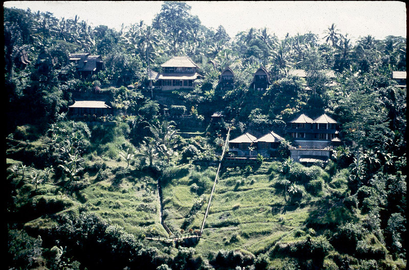 Indonesia2_010.jpg