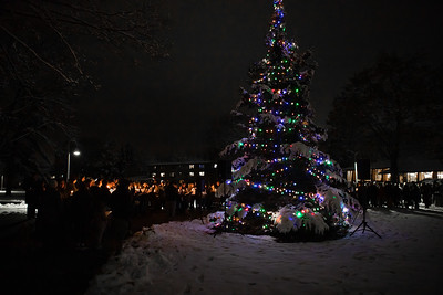 Christmas Tree Lighting 2019