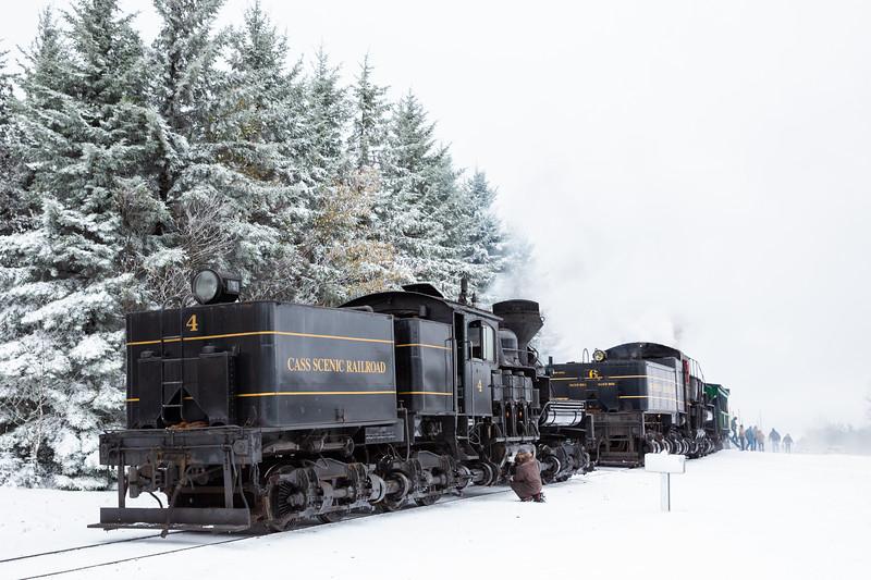 WVWS Cass Scenic RR Bald Knob Snow-8372.jpg