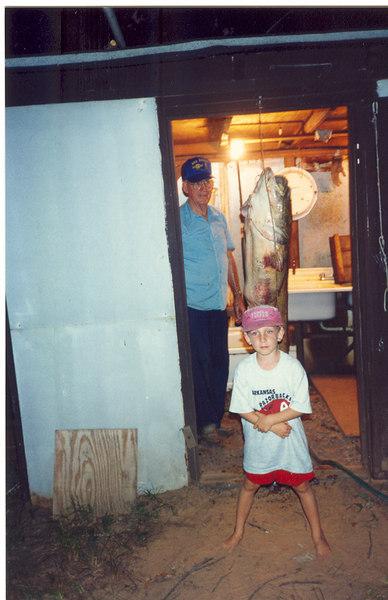 Arkansas 1993