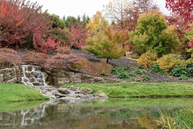 Mayfield Garden - Autumn