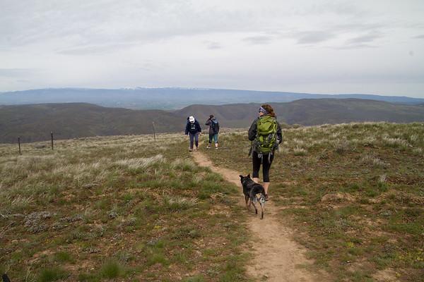 2017-04-29 Umtanum Ridge Trail, Yakima River Canyon