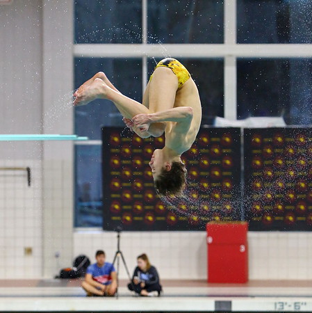 20190222 State Boys Diving Championship at UMCP Eppley