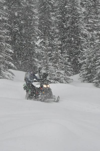 G3_SnowSpider_04.2017-401.jpg