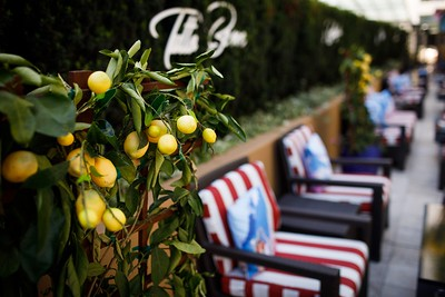 10 best new Bay Area restaurants for outdoor dining