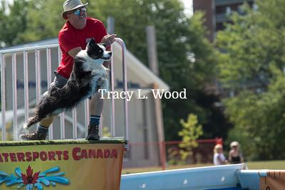 Canine Watersports Canada - Sarnia Ribfest