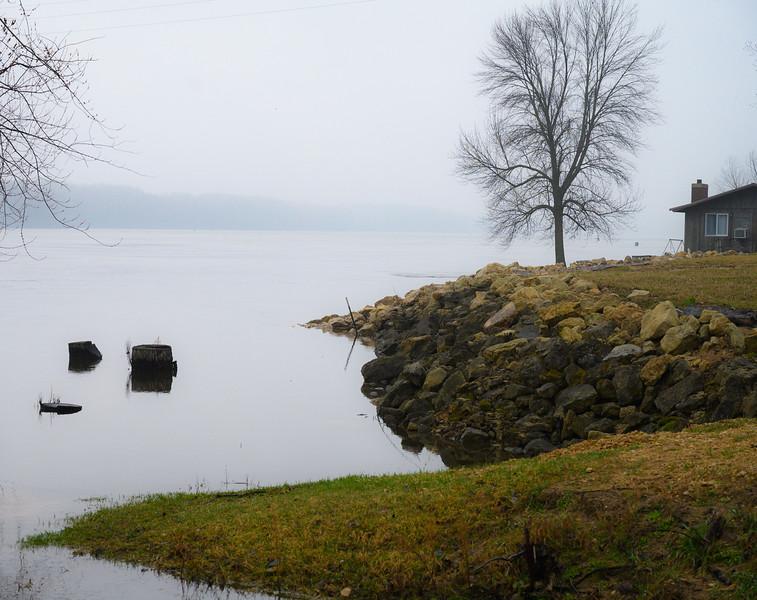 04-07-2020-fog-15.jpg