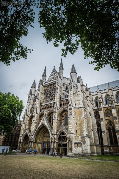 20140728_LION_LONDON (36 of 48)