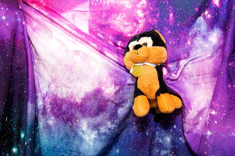 Stuffie-Day-0113.jpg