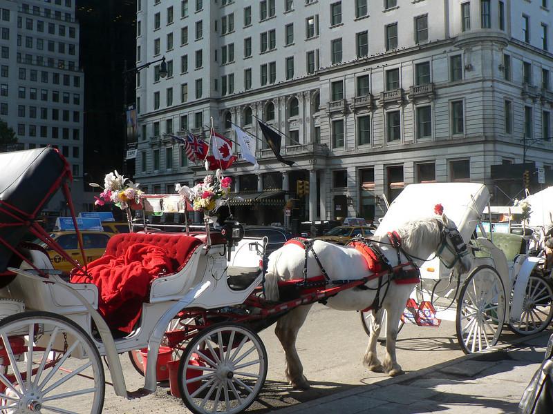 Hästskjuts vid hörnet av 5:e Avenyn och Central Park.