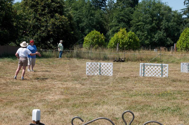 Fidos Camp 2009_DZD1311.jpg