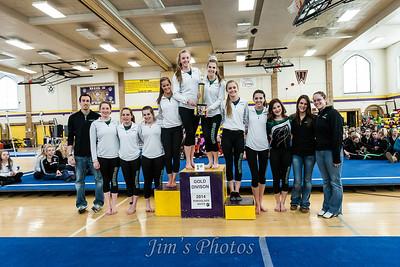 Madison Memorial Gymnastics - Jan 18, 2014