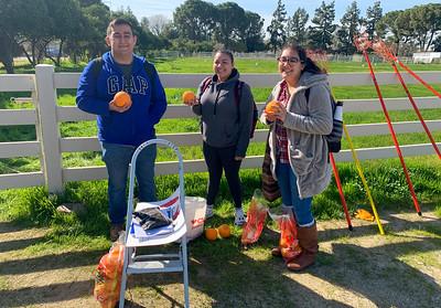 2020: Ag Department Annual Orange Sale
