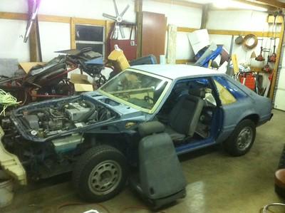 My Mustang