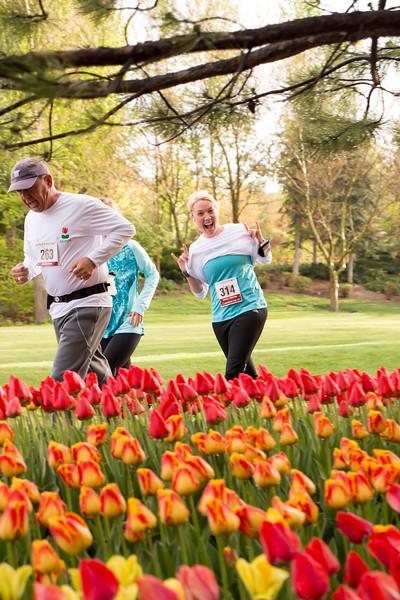 TulipFestHalfMarathon_Runners_Gardens_2015_IMG_5143.jpg