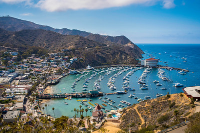 Catalina Divers & Landscapes