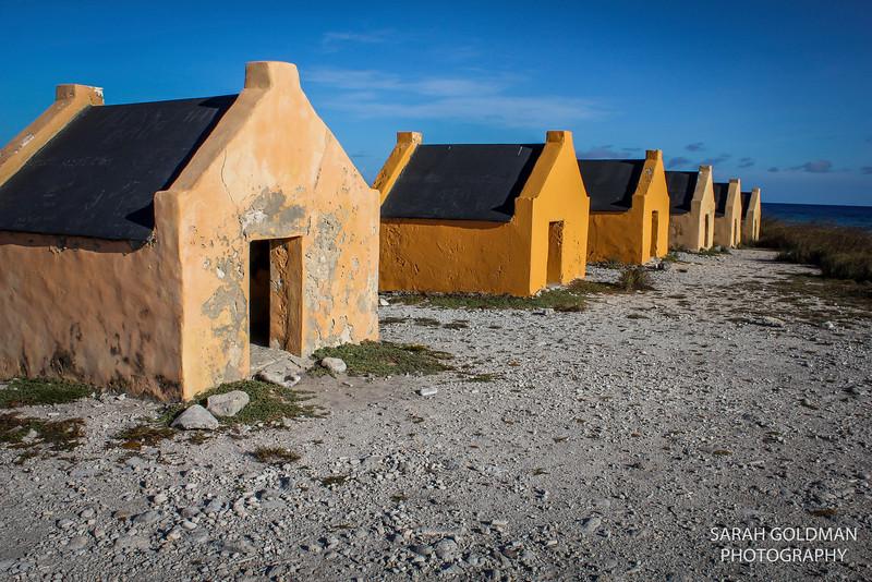 Bonaire-photography (7).jpg