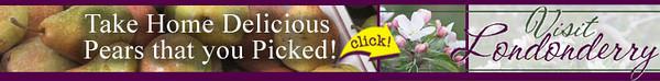 !visit_ad_728x90_upick_pears.jpg