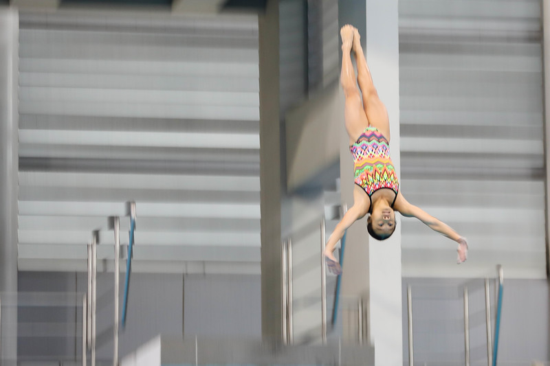 Singapore_National_Diving_Championship2018_2018_07_01_Photo by_Sanketa Anand_610A8158.jpg