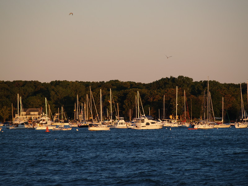 Put-in-Bay harbor, September