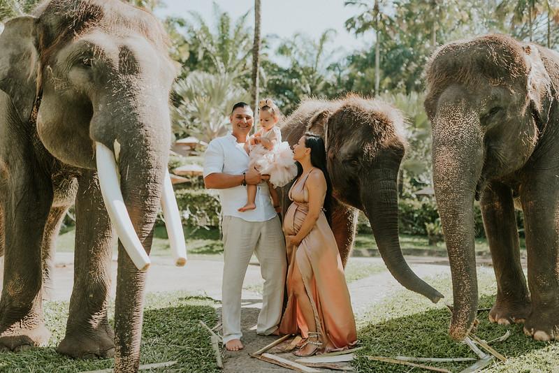 VTV_family_photoshoot_elephants_Bali_ (11).jpg