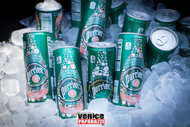 VenicePaparazzi-113.jpg