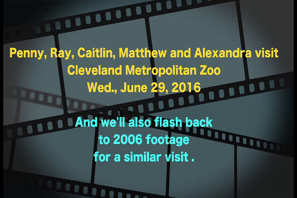 VIDEO:  20 minutes  Click on above image and then the triangle and video will play.  -- Penny and Ray take grandchildren to the Zoo on June 29 while Lisa is working.  Ray then combined footage of that day to a similar visit we made in 2006 with the grandchildren and Lisa.