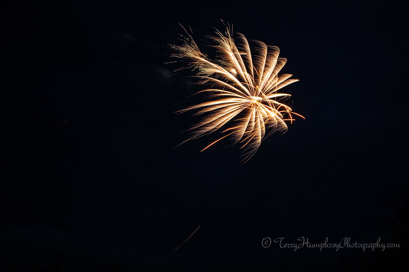 2019 Paradise Fireworks-41.jpg