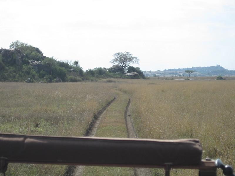 Tanzania14-3512.jpg