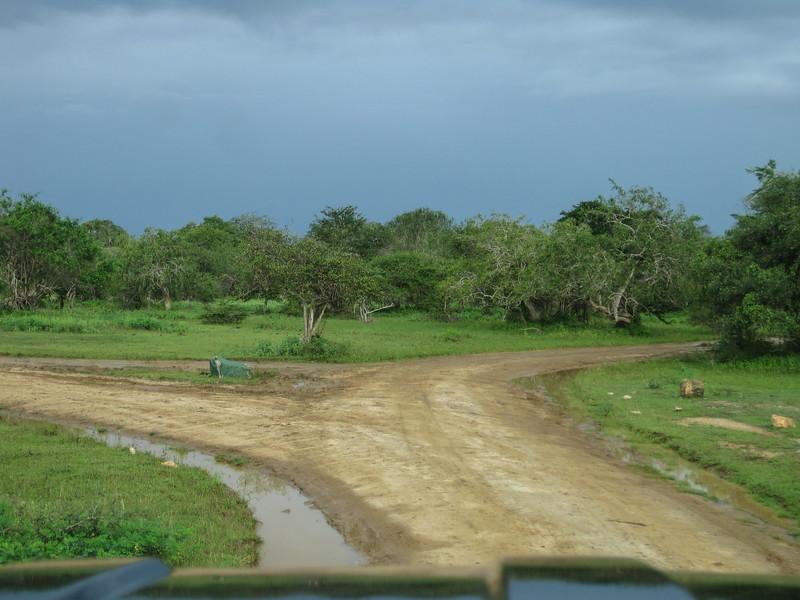 Sri_Lanka17-9797.jpg
