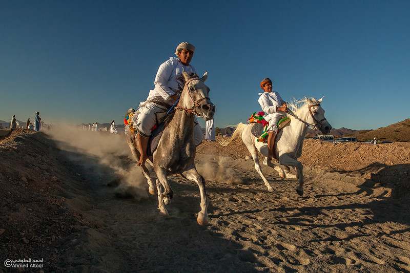 IMG_1102 copy- Camel Race.jpg