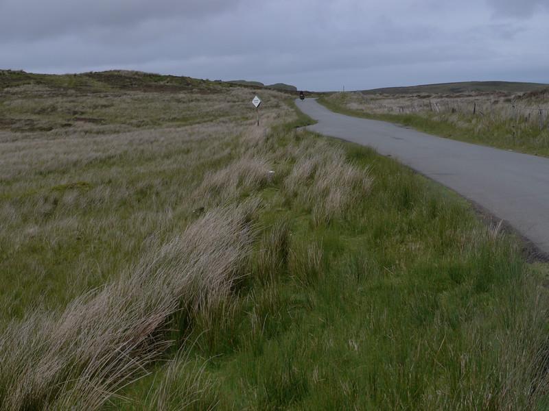 @RobAng Juni 2015 / Flodigarry, Isle of Skye / Flodigarry  (Inner Hebridies), Scotland, GBR, Grossbritanien / Great Britain, 79 m ü/M, 2015/06/20 13:17:18