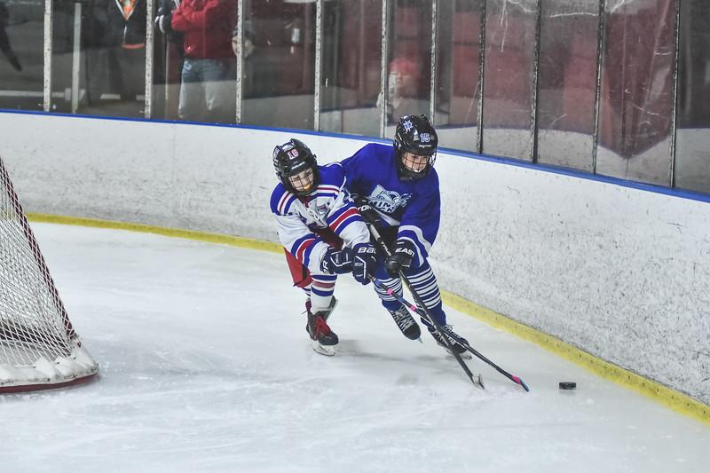 Leafs-19.jpg