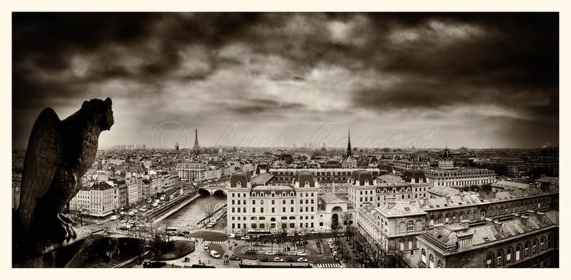 Notre-Dame-gargouille-1_0000-B&W.jpg