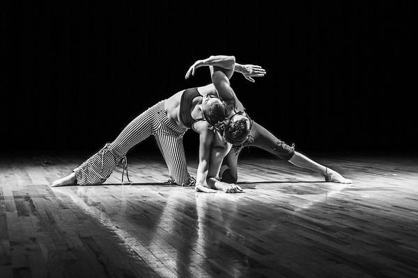 Cirque Array (Part One)- Variety Showcase
