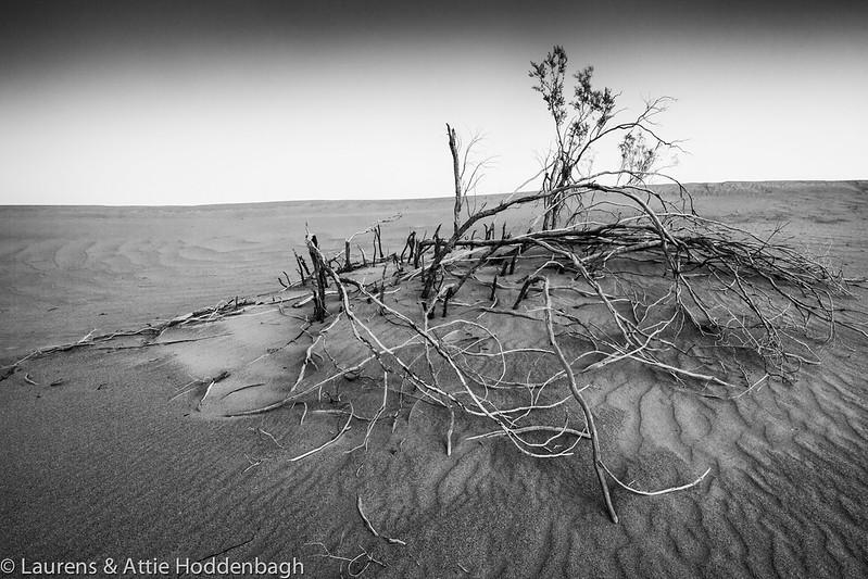 Sand Dunes, Death Valley, California  Filename: CEM007568-DeathValley-SandDunes-CA-USA-EDIT.jpg