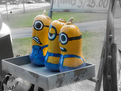 Minions-out of their gourd