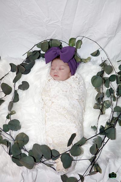 Chevelle Newborn Pix