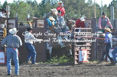 07-03-14 Perf Saddle Bronc