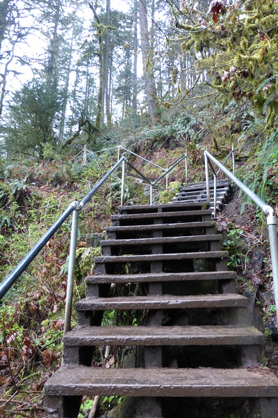 The 185 steps needed to go up and down to see Lower South Falls.