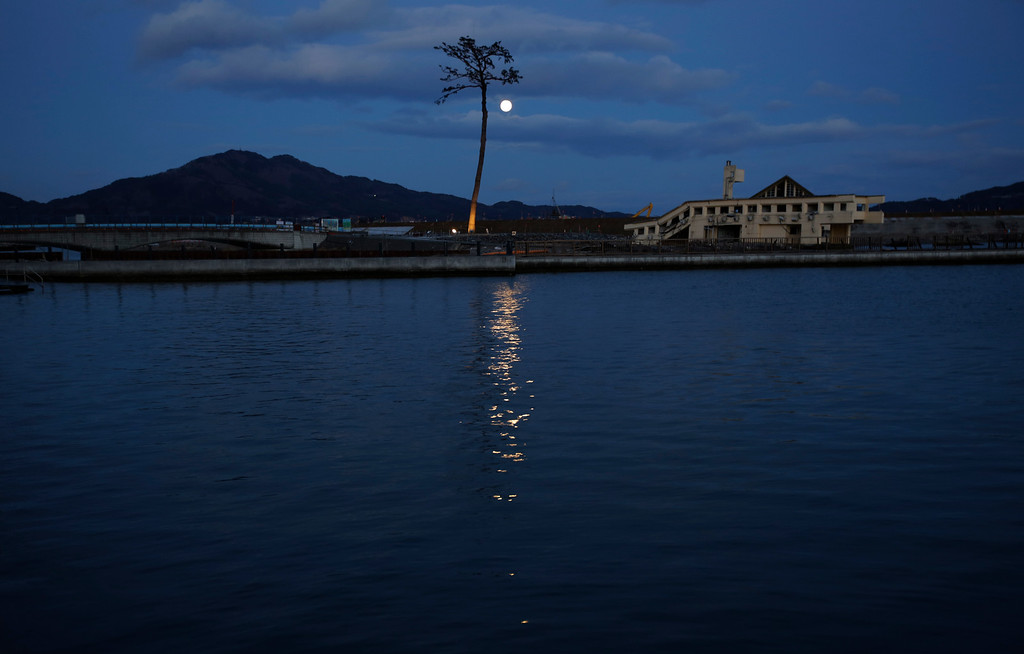 . FIEL - In this Thursday, March 5, 2015 file photo, the lone pine tree that miraculously survived the deadly 2011 tsunami among 70,000 trees along the coastline, stands in Rikuzentakata, Iwate Prefecture, northeastern Japan. The tree, which was badly damaged from seawater after surviving the tsunami, was cut down in 2012 and treated for decay after which it was preserved using artificial materials. It was later placed back where it was found to stand as a symbol of hope and survival. (AP Photo/Eugene Hoshiko, File)