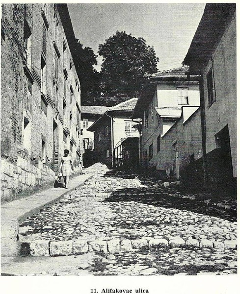 Alifakovac3.jpg