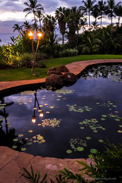 Maui pond at sunset