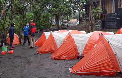 Machame Campsite 9,840 ft..